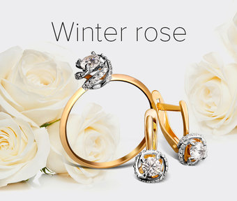 Collection «Winter rose»